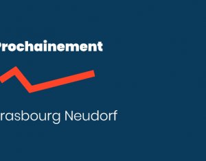 Achat / Vente programme immobilier neuf Neudorf proximité immédiate Tram et Place de l'Etoile (67000) - Réf. 5371