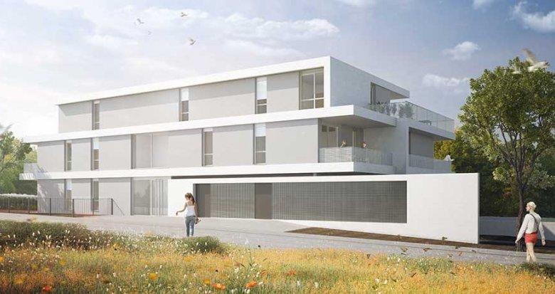 Achat / Vente programme immobilier neuf Truchtersheim quartier Le Hoeft (67370) - Réf. 2792